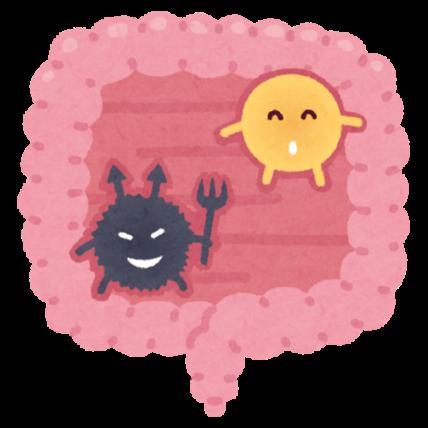 善玉菌と悪玉菌
